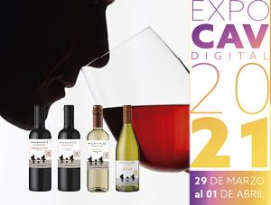 Curso básico Expo CAV con Viña Morandé todo Chile