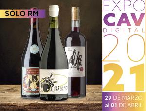 Clase magistral de  vinos de autor en Expo CAV
